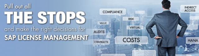 Pull Out All the Stops and Make the Right Decisions for SAP License Management