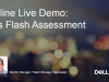 Online Live Demo: das Flash Assessment
