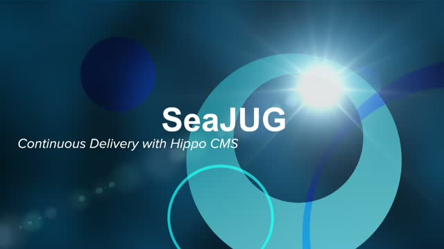 Continuous Delivery with Hippo CMS