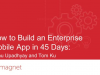 How to Build an Enterprise Mobile App in 45 Days