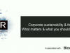 IR Magazine Webinar - Corporate sustainability & the IRO
