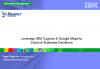 Leverage IBM Cognos & Google Maps to Improve Business Decisions