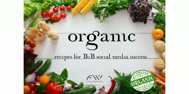 Organic: recipes for B2B social media success