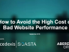 How to Avoid the High Costs of Bad Website Performance
