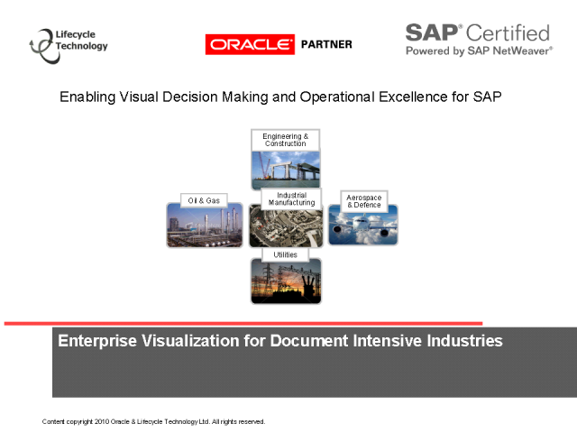 Enabling Visual Decision Making & Operational Excellence for SAP