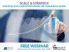 Scale & Strategy: Essential tools for transforming the commercial model