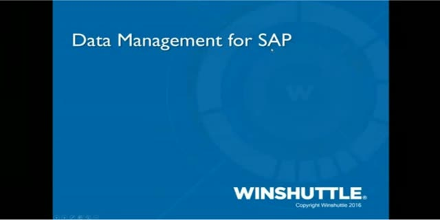Data Management for SAP