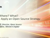 Why? Where? What? How to Apply an Open Source Strategy