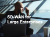 Scalable Network Infrastructure: SD-WAN for Large Enterprises