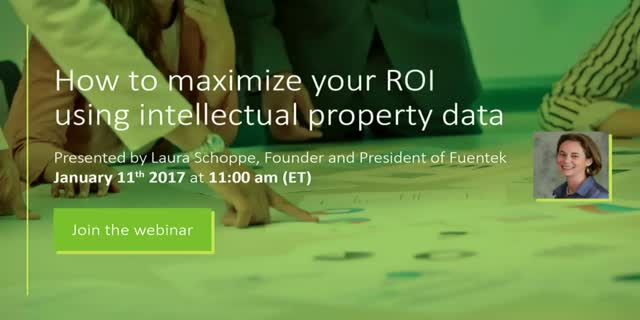 How to Maximize Your ROI Using Intellectual Property Data
