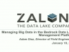 Managing Big Data in the Bedrock Data Lake Management Platform