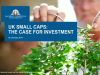 UK Small Caps: The Case for Investment