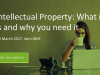 Intellectual Property: What is it, who has it, and why do you need it?