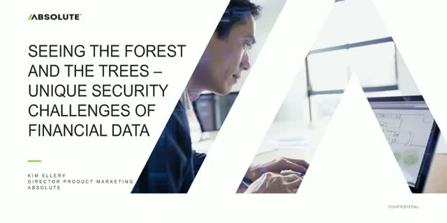 Seeing the Forest and the Trees – Unique Security Challenges of Financial Data