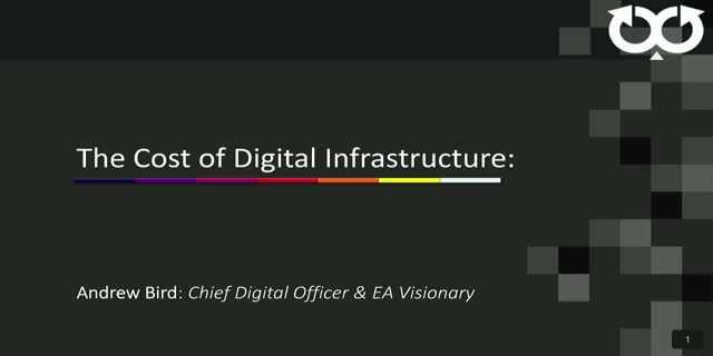 The cost of Digital infrastructure - Financial Granularity