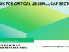 Outlook for Critical US Small Cap Sectors