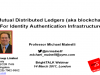 Blockchain For Identity Authentication Infrastructure