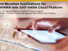 Build & Sell Innovative Extensions for SAP S/4HANA with SAP HANA Cloud
