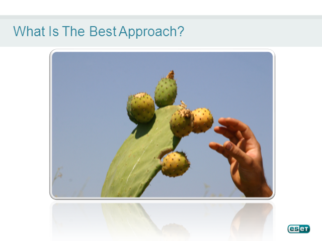 Which Part of the Prickly Pear is the End Point?