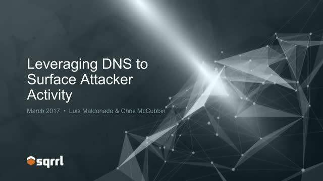 Leveraging DNS to Surface Attacker Activity
