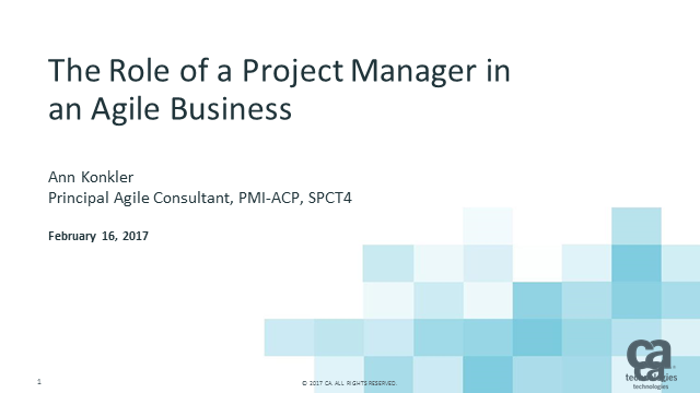 The Role of the Project Manager in an Agile Business