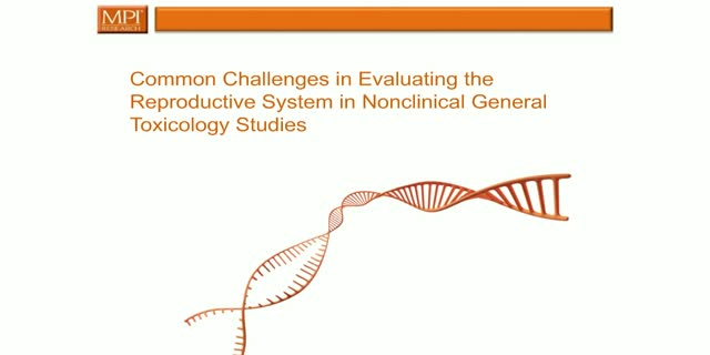 Common Challenges in Evaluating the Reproductive System in Nonclinical