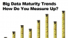 Big Data Maturity Trends: How Do You Measure Up?