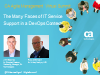 The Many Faces of IT Service Support in a DevOps Context