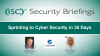 Sprinting to Cyber Security in 30 Days