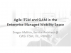Agile ITSM and SIAM in the Enterprise Managed Mobility Space