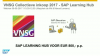 Learn While you Earn - SAP Learning Hub via VNSG