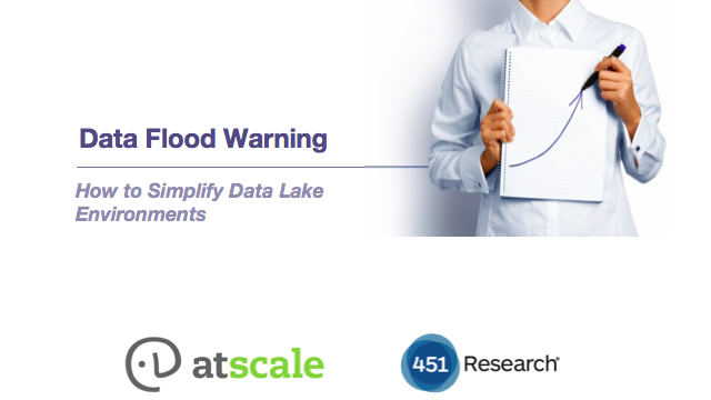Data Flood Warning: How to Simplify Data Lake Environments
