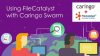 Using FileCatalyst with Caringo Swarm