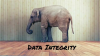 Data Integrity the Key to Operational Insights or an Elephant in the Room?