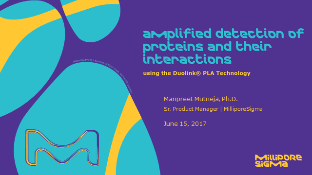 Amplified Detection of Proteins and their Interactions using Duolink PLA