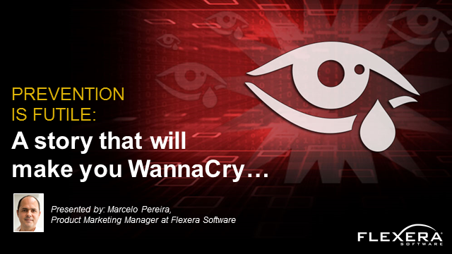 Prevention is futile: A story that will make you WannaCry…