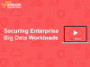 Securing Enterprise Big Data workloads