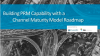 Building PRM Capability with a Channel Maturity Model Roadmap in Mind