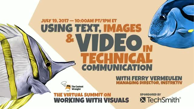 Using Text, Images and Video in Technical Communication