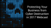 Protecting Your Business from Cyber Destruction in 2017