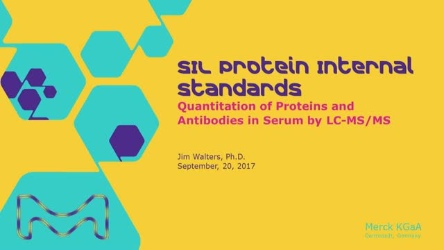 Stable Isotope-Labeled Protein Internal Standards