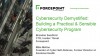 Cybersecurity Demystified: Building a Practical & Sensible Cybersecurity Program