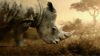What you can learn about the Internet of Things from rhino conservation