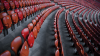 How Dimension Data and SAP are enhancing the sports fan experience