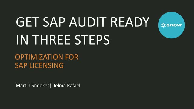 Get SAP Audit Ready: Three Steps to a Successful Audit