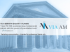 Systematic equity investing with VIA-AM
