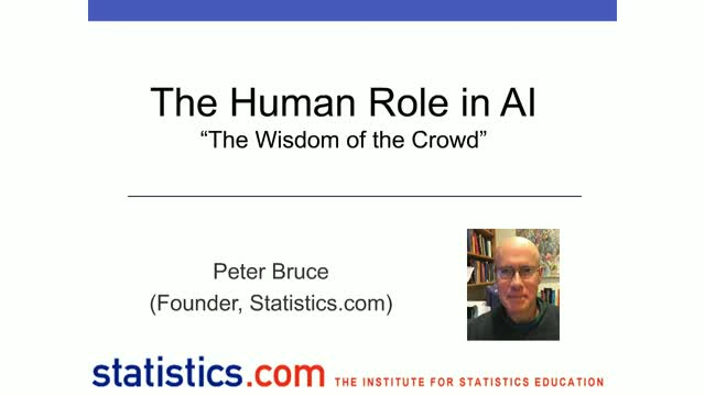 The Human Role in AI