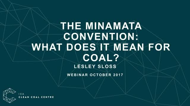 What does the Minamata convention mean for coal?