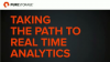 Taking the Path to Real Time Big Data Analytics