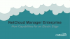NetCloud Manager Enterprise: New Capabilities for an Elastic Edge